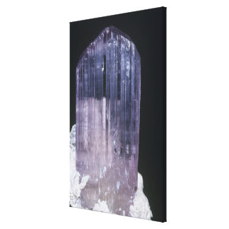 Spodumene Crystal Canvas Print