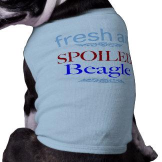 spoiled Beagle Shirt