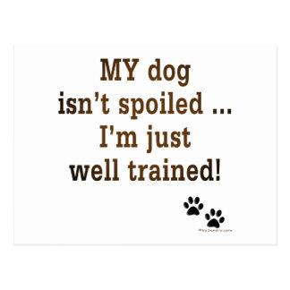 Spoiled Dog Postcard