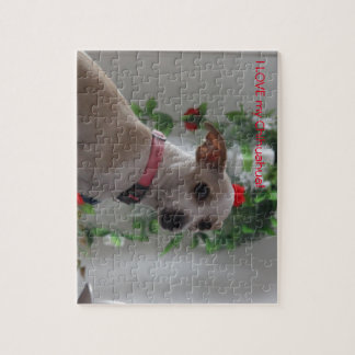 Spoiled Litle Chihuahua Jigsaw Puzzle