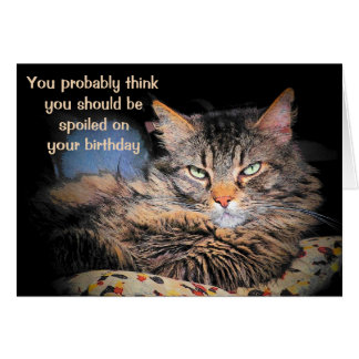 Spoiled On Your Birthday?  Think You're A CaT? Greeting Card