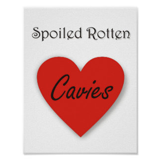 Spoiled Rotten Cavies Poster
