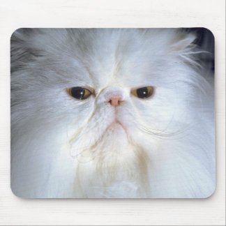 Spoiled Rotten Mouse Pads
