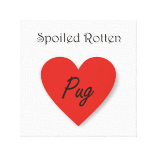 Spoiled Rotten Pug Canvas Print