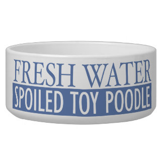 spoiled toy poodle bowl