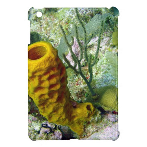 sponge iPad mini covers