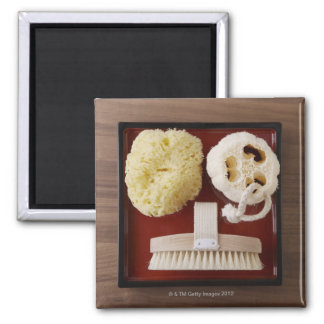 Sponge, loofah, brush on red tray 2 inch square magnet