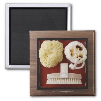 Sponge, loofah, brush on red tray magnet