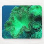 Sponges Mouse Pad