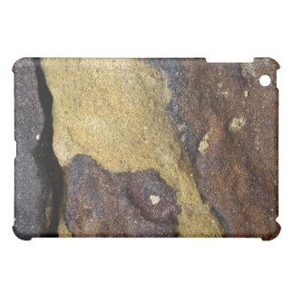 spongy stone  iPad mini cover