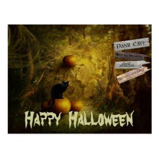 Spooky Black Cat, Pumpkin Halloween Postcard