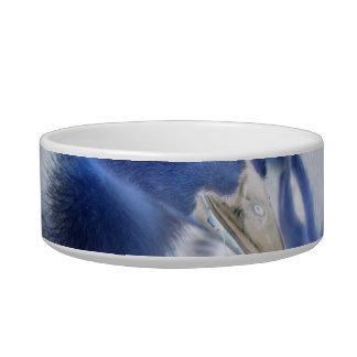 Spooky blue and white baby ducks cat bowls