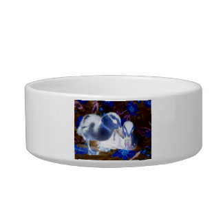 Spooky blue and white baby ducks cat food bowl