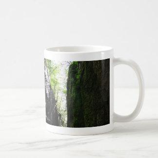 Spooky Flume Gorge Algae Fern Wall Mug