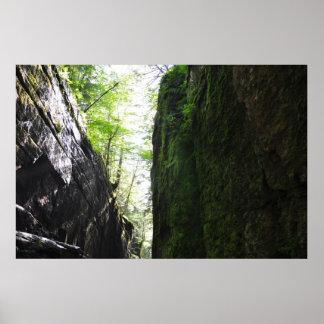 Spooky Flume Gorge Algae Fern Wall Poster