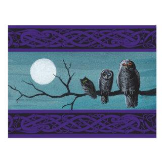 Spooky Halloween Owls Postcard