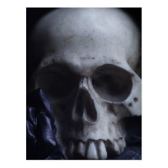 Spooky Human Skull Grim Black White Photography Postcard
