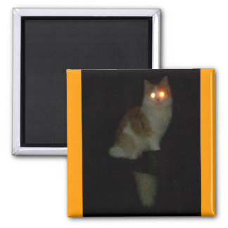 spooky kitty 2 inch square magnet