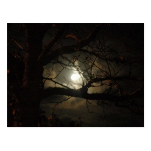 Spooky Light Post Card