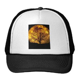 Spooky Night Moon Tree Autumn Destiny Gifts Hats