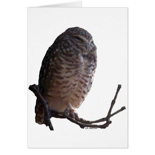 Spooky Old Owl Card