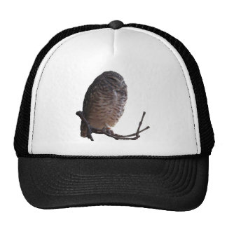 Spooky Old Owl Mesh Hat