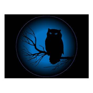 Spooky Owl Blue Moon Post Card