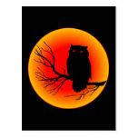 Spooky Owl Postcard