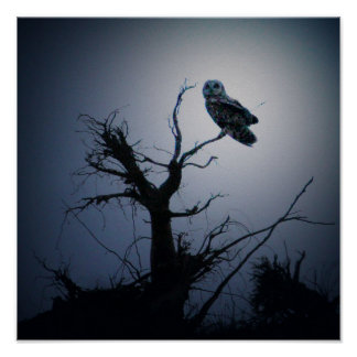 Spooky Owl Poster