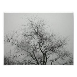 Spooky Photo Print