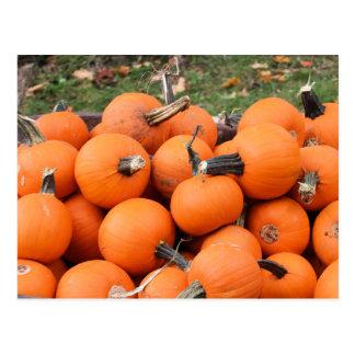 Spooky Pumpkins Postcard