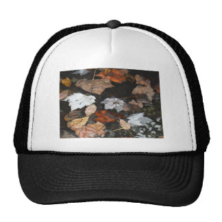 Spooky Spider on floating fall leaves on water Trucker Hats
