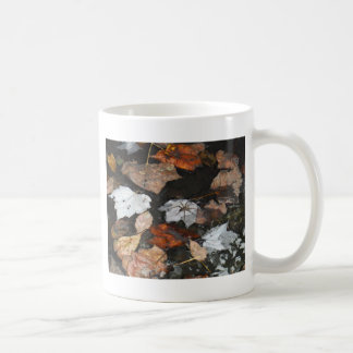 Spooky Spider on floating fall leaves on water Coffee Mugs