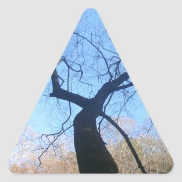 dww25921 Spooky Tree Triangle Sticker