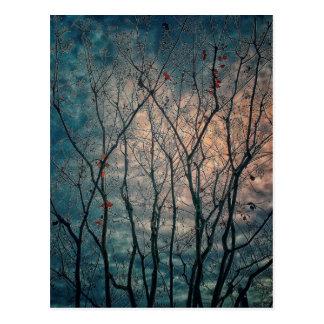 Spooky Trees Postcard