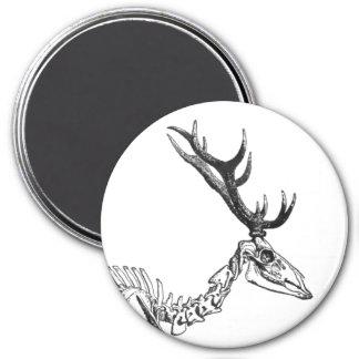 Spooky vintage skeleton reindeer drawing magnet