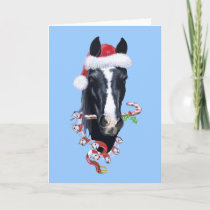 Spooky's Christmas Holiday Card