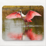 Spoonbill Mouse Pad