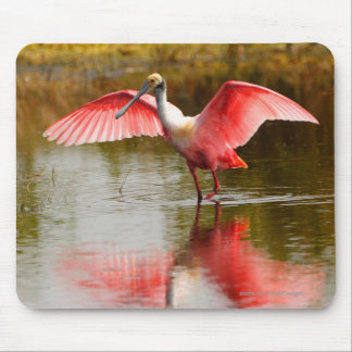 Spoonbill Mouse Mat