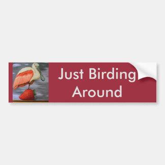Spoonbill On A Strawberry Car Bumper Sticker
