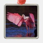 Spoonbill rosado (ajaja del Ajaia) con el cormorán Adornos De Navidad