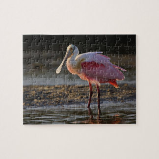 Spoonbill rosado ajaja del Ajaia querido del til Puzzle