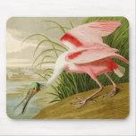 Spoonbill rosado Mousepad Tapetes De Ratones