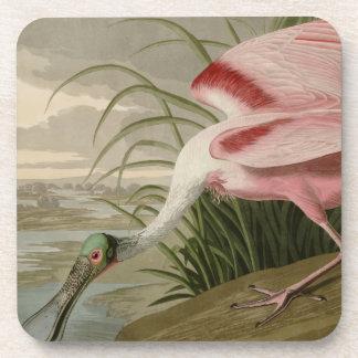 Spoonbill rosado posavasos