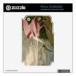Spoonbill rosado skins para iPhone 3GS