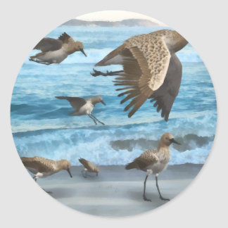 Spoonbill Sandpipers Classic Round Sticker