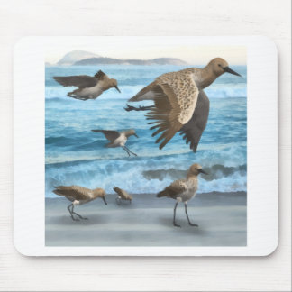 Spoonbill Sandpipers Mouse Pad