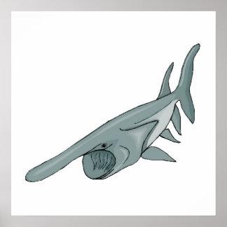 Spoonbill Shark Posters