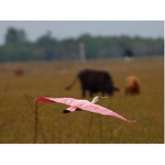 Spoonbills Flying Photo Sculpture