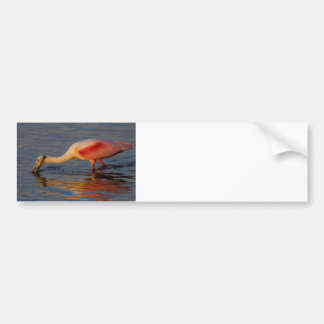 Spooning for Dinner Car Bumper Sticker